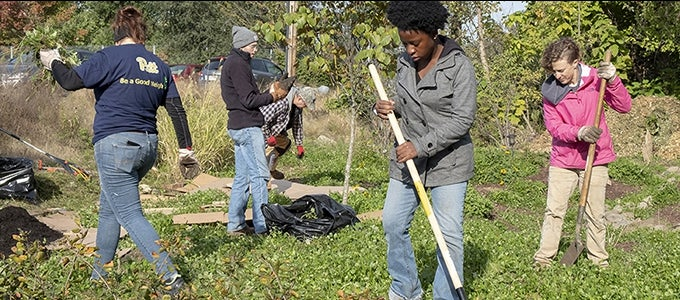 diverse group cleaning up vacant lot