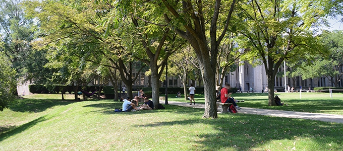 students relaxing on Cathedral of Learning lawn