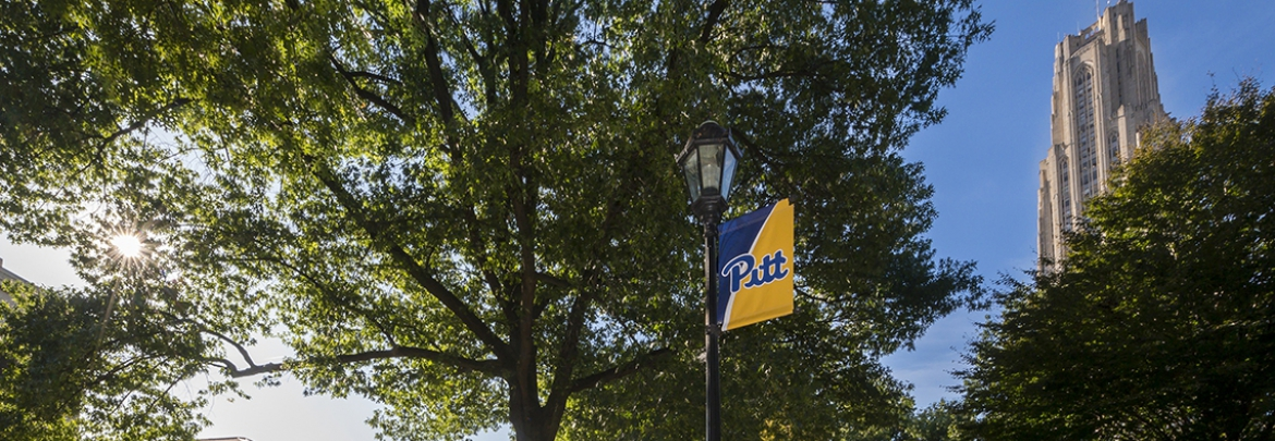 green leafy trees behind Pitt banner with Cathedral of Learning in background