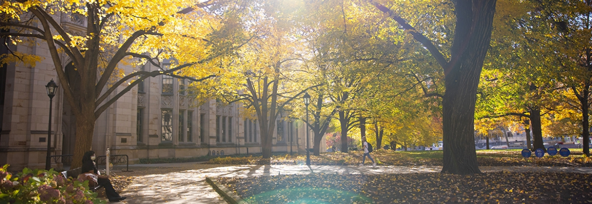 sidewalks outside cathedral of learning with fall leaves