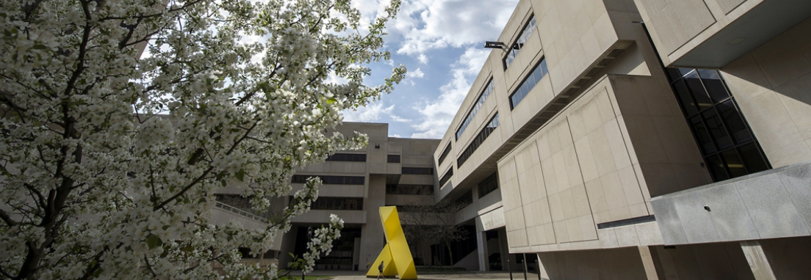 flowering tree and yellow steel sculpture with concrete building